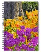 Central Park Tulip Display Spiral Notebook