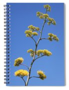 Century Plant Flowers Spiral Notebook
