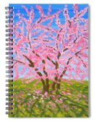 Cercis Tree, Oil Painting Spiral Notebook