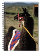 Chaco Spiral Notebook