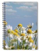 Chamomile Nature Spring Scene Spiral Notebook