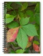 Change Is Coming Spiral Notebook