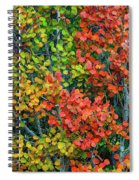 Changing Spiral Notebook