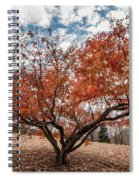 Changing Of Seasons Spiral Notebook