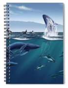 Channel Islands Whales Spiral Notebook