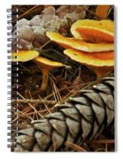 Chanterell Mushrooms  Spiral Notebook