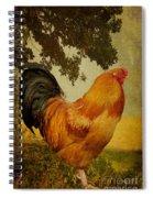 Chanticleer Spiral Notebook