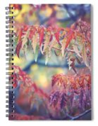 Chaotic Beauty Spiral Notebook