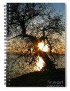 Character Spiral Notebook