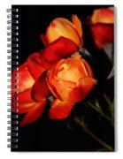 Charisma Roses 4 Spiral Notebook