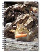 Charming Chipmunk Spiral Notebook