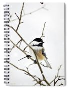 Charming Winter Chickadee Spiral Notebook