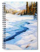 Charming Winter Spiral Notebook