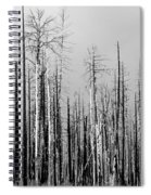 Charred Trees Spiral Notebook
