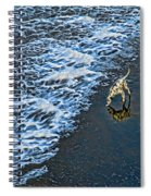 Chasing Waves Spiral Notebook