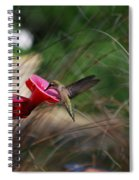 Check Out My Wings Spiral Notebook