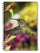Check Out That Zinnia Spiral Notebook