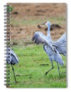 Check The Moves Spiral Notebook