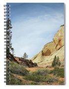 Checkerboard Mesa Spiral Notebook