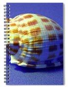 Checkered Helmet Seashell Spiral Notebook