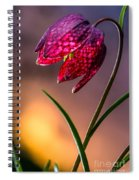 Checkered Lily Spiral Notebook