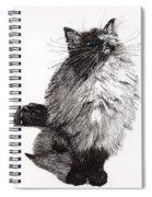 Cheekie Baby Spiral Notebook