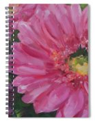 Cheerful Blush Spiral Notebook