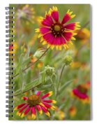 Cheerful Greeting Spiral Notebook