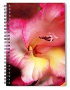 Cheerful Heart Spiral Notebook