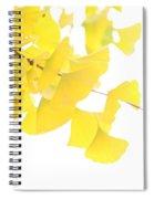 Cheery Ginkgo  Spiral Notebook
