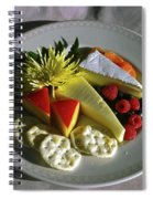 Cheese Wedges With Crackers And Fruit Spiral Notebook