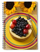 Cheesecake With Fruit Spiral Notebook