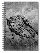 Cheetah Hunting Deer  Spiral Notebook