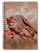 Cheetah Hunting Spiral Notebook