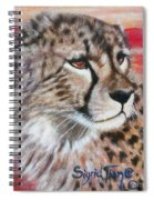 Blaa Kattproduksjoner       Cheetahs Face Spiral Notebook