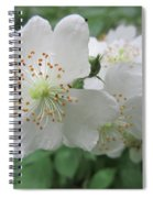 Cherokee Rose At The Farm Spiral Notebook