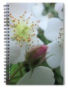 Cherokee Rose Dover Nh  Spiral Notebook