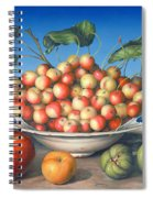 Cherries In Delft Bowl With Red And Yellow Apple Spiral Notebook
