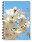 Cherry Blossom And A Bee Spiral Notebook