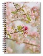 Cherry Blossom Delight Spiral Notebook