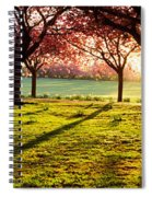 Cherry Blossom In A Park At Dawn Spiral Notebook