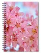 Cherry Blossom Pastel Spiral Notebook