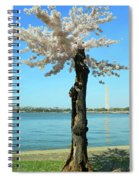 Cherry Blossom Portrait Spiral Notebook