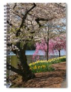 Cherry Blossom Trees Of Branch Brook Park 17 Spiral Notebook