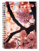 Cherry Blossoms In Washington D.c. Spiral Notebook