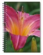 Cherry Cheeks Spiral Notebook