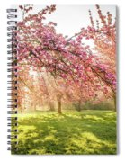 Cherry Flowers Garden Illuminated With Sunrise Beams Spiral Notebook
