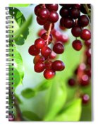 Cherry Jubilee Spiral Notebook