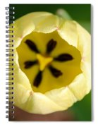 Early Opener Spiral Notebook
