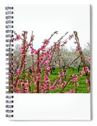 Cherry 'n' Apple Blossoms Spiral Notebook